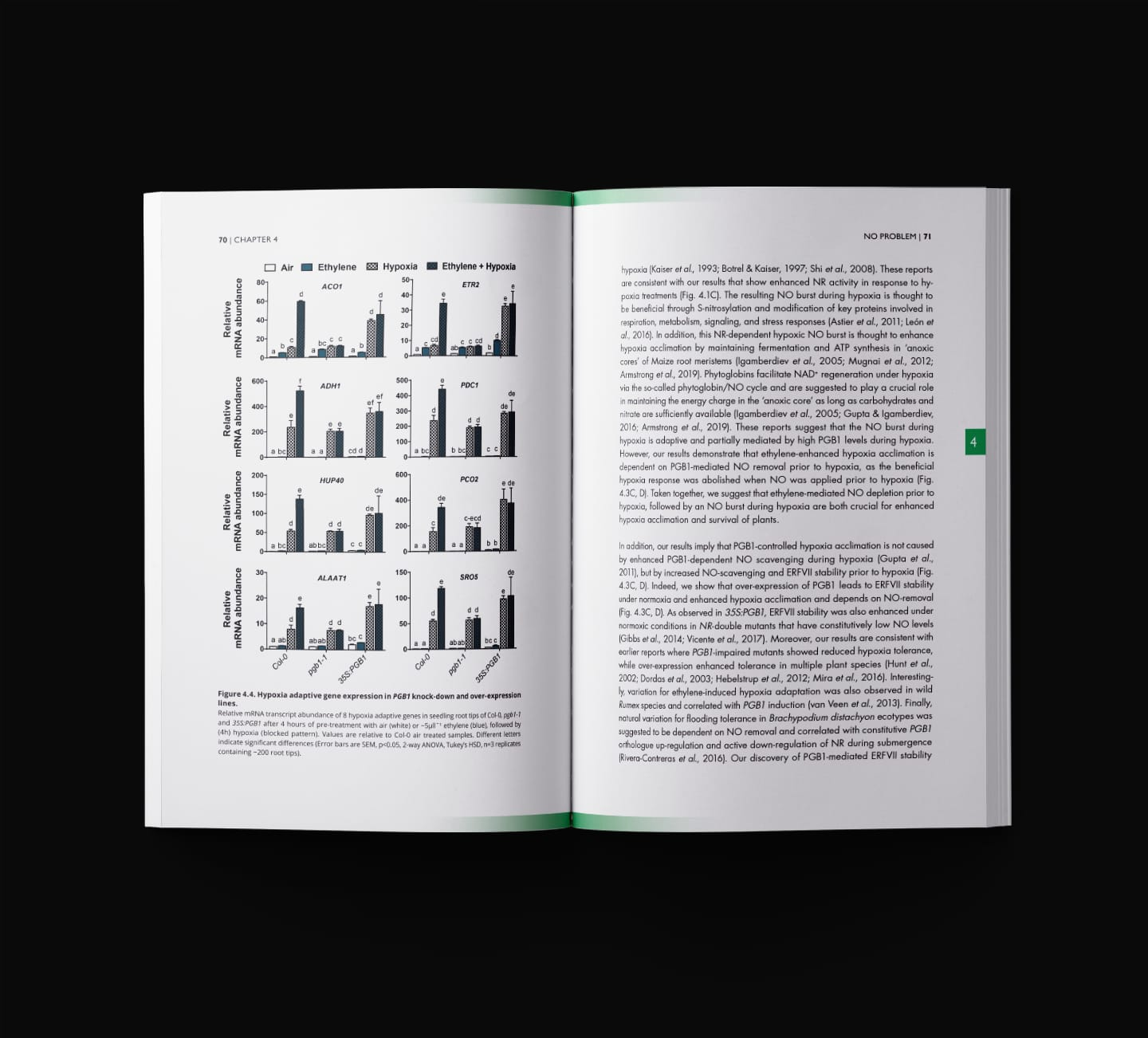 The Early Flooding Signal - Thesis Book Design