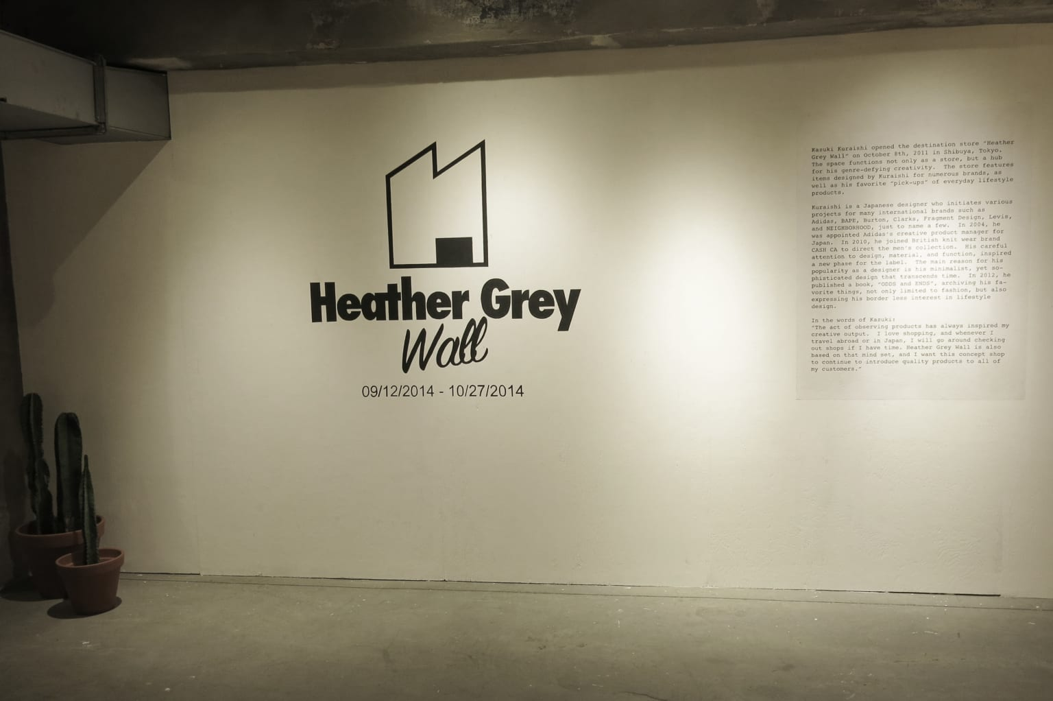 Heather Grey Wall for Urban Outfitters: Spring/Summer 2014