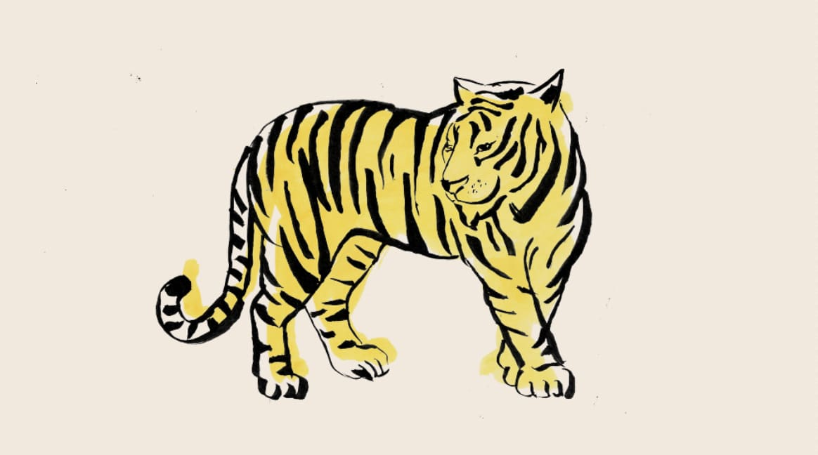 The Atlantic - The other Tiger