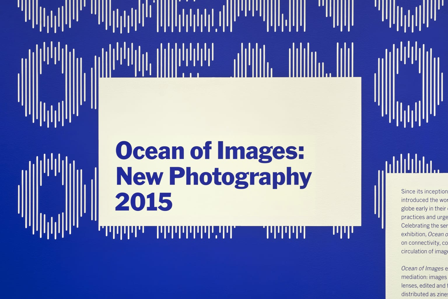 Ocean of Images: New Photography 2015