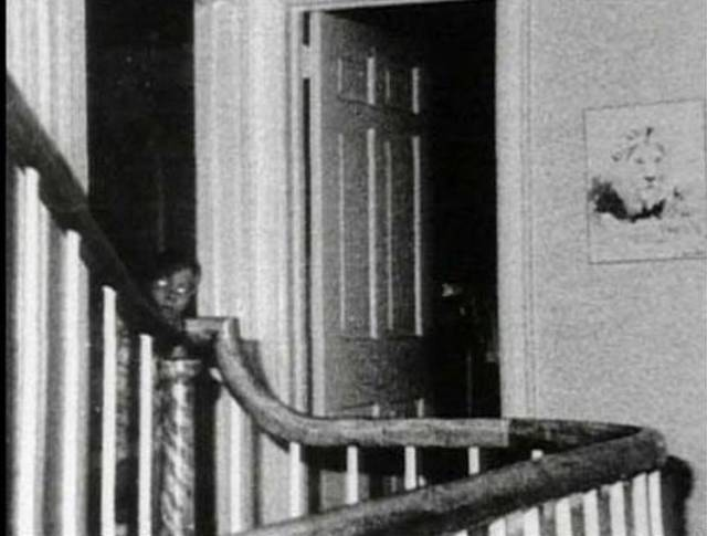 8 Urban Legends That Turned Out To Be True, And 7 That Haven't Been Proven (Yet)