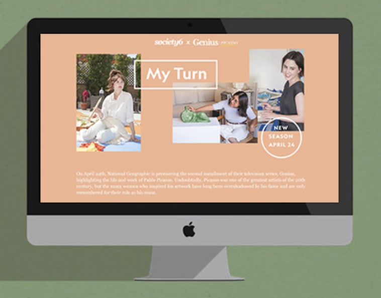Society 6 Campaign Landing Pages