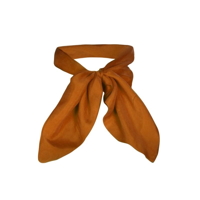 Cleo Gold Sustainable Silk Touch Neck Scarf image