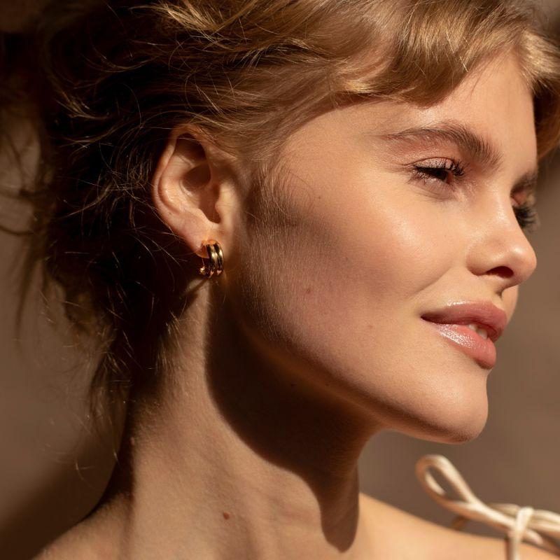 Isabelle Earrings image