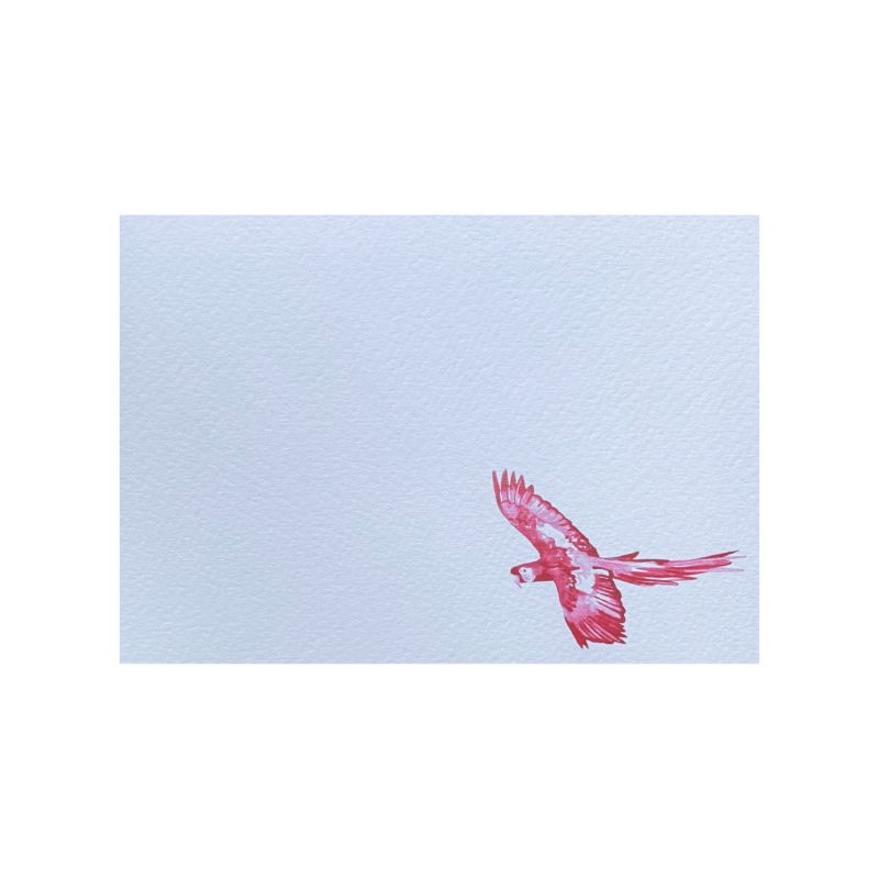 Parrot Notecards: Pack Of 10 image