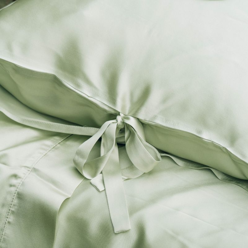 Sleeping Beauty - Classic Pure Silk Queen Size Pillowcase - Light Green image