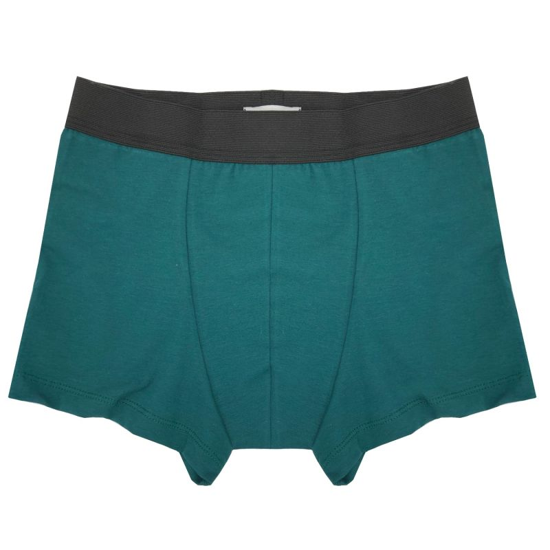 Organic Cotton Jersey Trunk In Emerald Green image