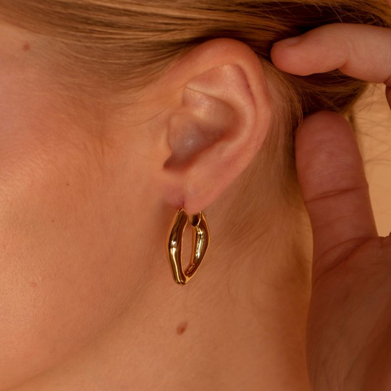 Liv Gold Plated Earrings image