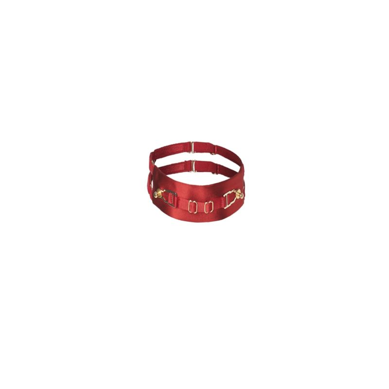 Secure Collar - Red image