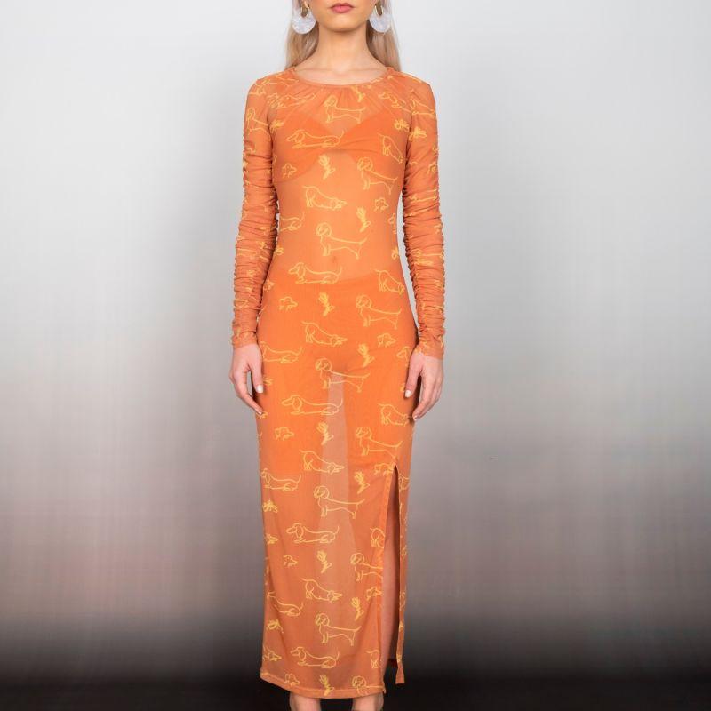 Printed Mesh Dress image