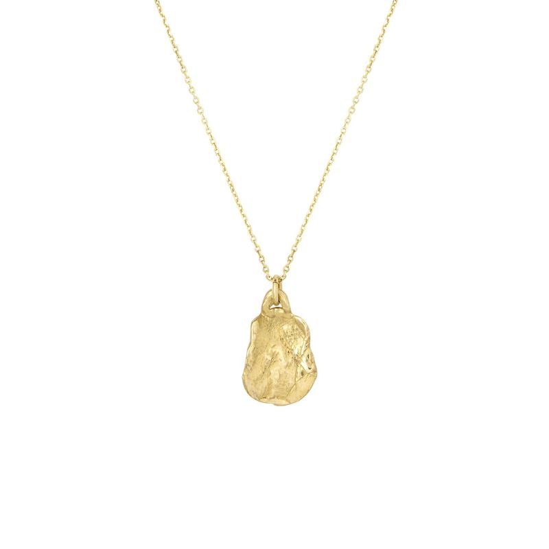 9ct Gold Small Organic Medallion Necklace image