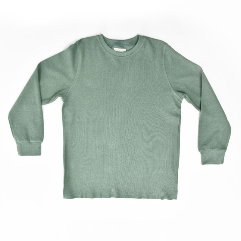 Cotton Cashmere Crewneck Sweatshirt In Pistachio image