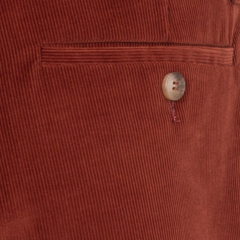 Wide Pleated Cord Chino image