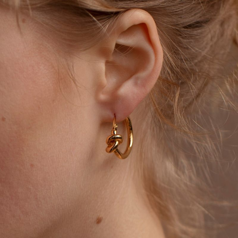 LUNA Gold Plated Earrings image