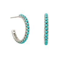 Halo Radiance Hoops - Silver image