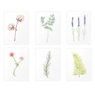 Botanical Prints Set of 6 A5 Unframed Prints on Fedrigoni Paper image