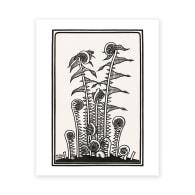 De Graag Ferns Art Print A5 image