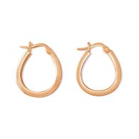 Fortunate Horseshoe Earrings image