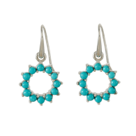 Halo Radiance Earrings - Silver image