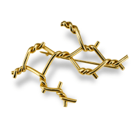 Amarres Brooch - Gold image