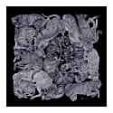 'Sleeping Dogs' Silver & Black Fringed Silk Twill Scarf image