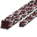 The Feather Tie Maroon image