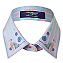 Candy Stripe Collar Blue image
