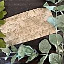 Organic Sage Green Face Masks image