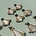 Turn Petal Earrings In Pearlescent image