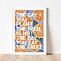Eat The Fruit Art Print - A3 image