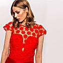 3D Floral Lace Pleated Dress image