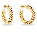 Twisted Hoop Earrings Gold image