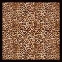 Arabian Leopard Shawl image