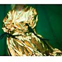Eidothea Dress In Disco Gold image
