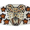 Jaguar Face Mask Terra image