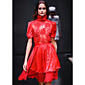 Red Blouse With Short Sleeves & Red Silk Layered Skirt image
