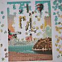 Cactus Jigsaw Puzzle 500 Pieces image
