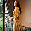 Alina Yellow Silk Dress image