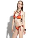 Safari Abstract Bikini image