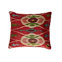 Silk Cushion Case in Multicolor image