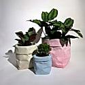 Concrete Paper Bag Small Blue image