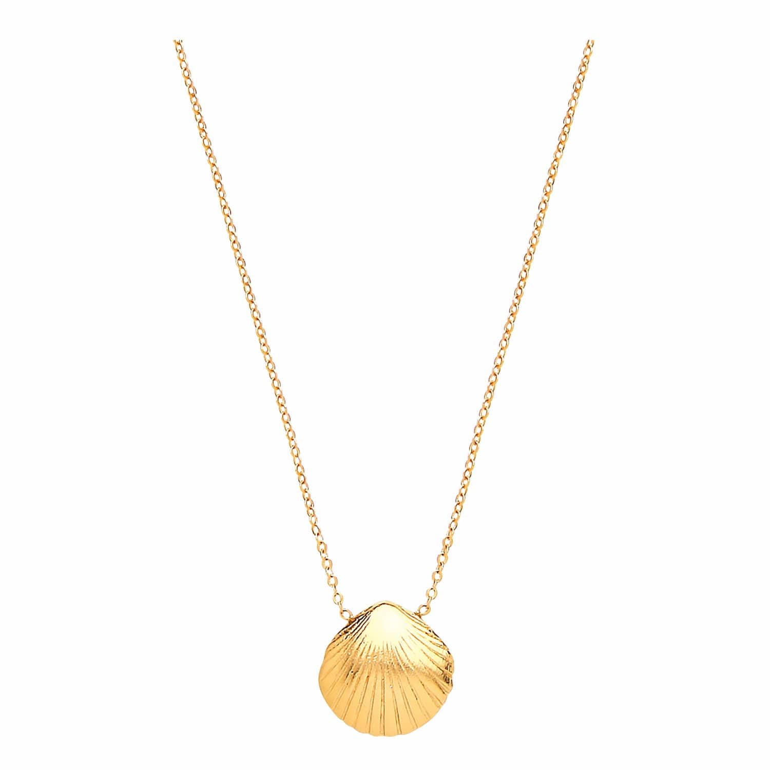68810c4372254 Small Gold Shell Necklace by Ottoman Hands