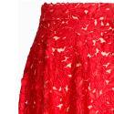 Floral Laser Cut Skirt image