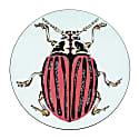 Rose Beetle Placemat image