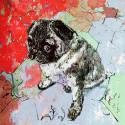 The Pug image