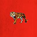 A Tiger Signed Print Medium image