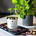 Artisan Collection - Rose Geranium Room Candle image