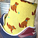 Dog socks image
