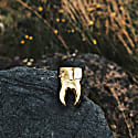 Golden Tooth Pin image