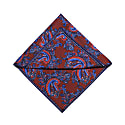 The Floral Paisley Pocket Square - Maroon image